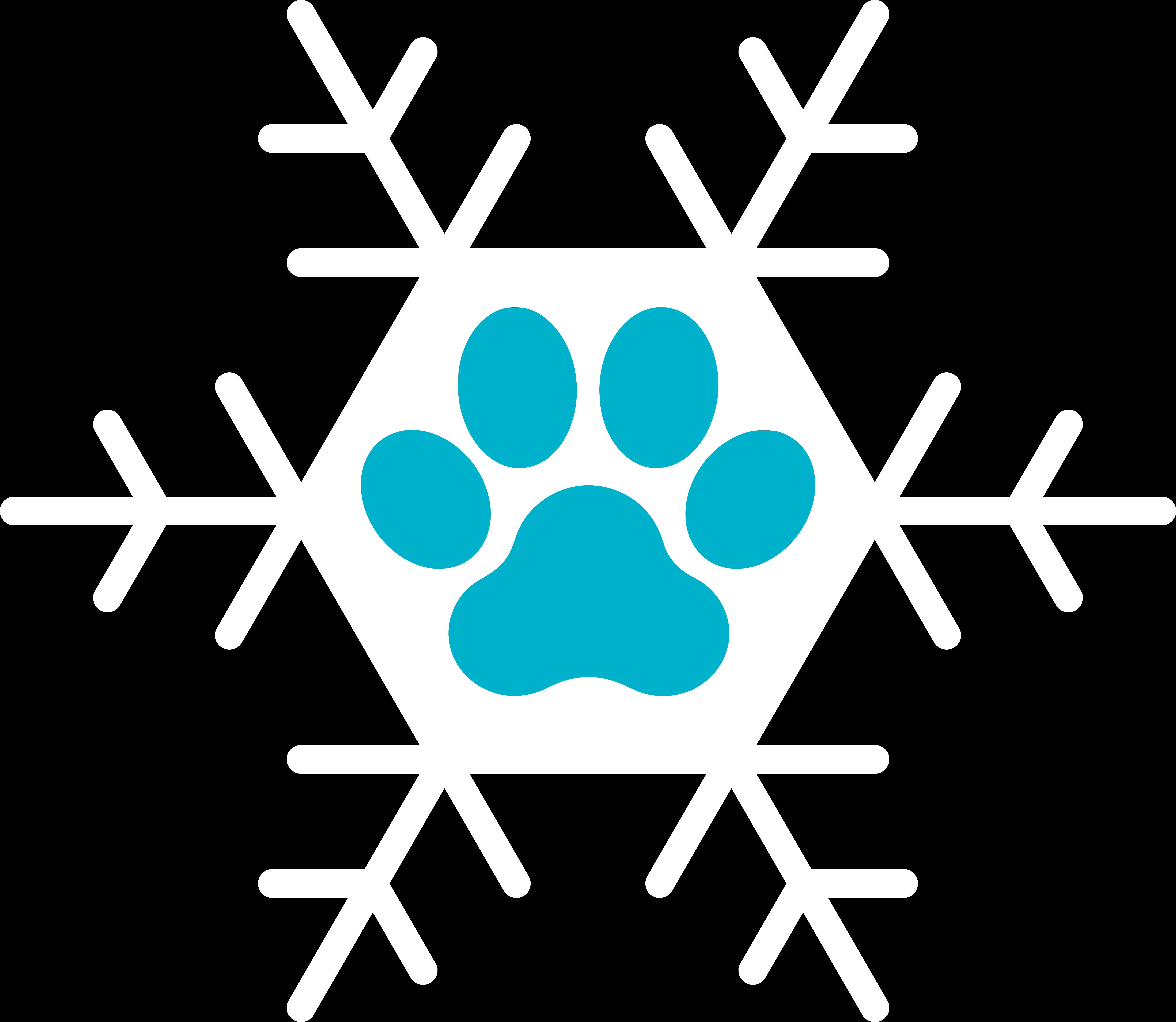 Midwinter Frolic Logo